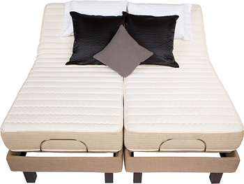 Wh3 Best Quality Electric Adjustable Bed By Electropedic