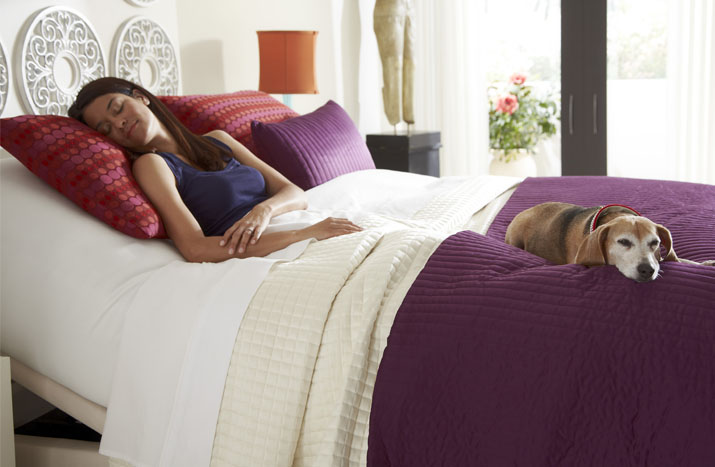 highest quality Adjustable-Beds in Los Angelesca